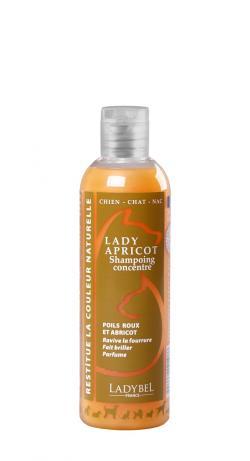 shampoing concentré ravive les poils roux lady abricot 1litre chien chat