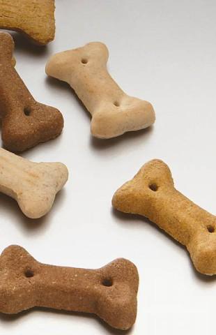 biscuit Mini Os 4 cm friandise pour chien