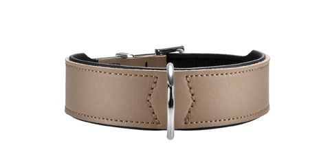 collier cuir Hunter Basic pour chien
