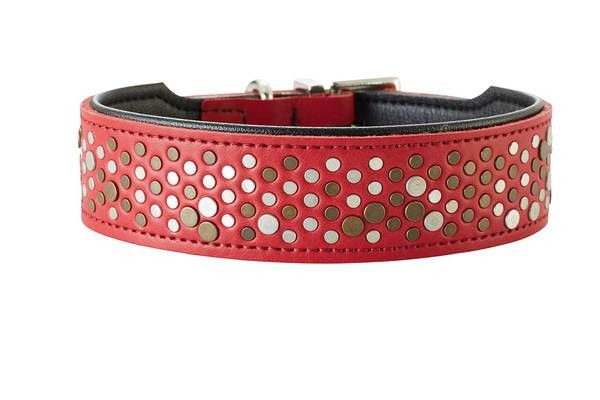 collier Hunter Basic Rivellino rouge