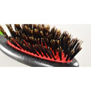 brosse dux poils de sanglier, lustrage des poils de chien et chat