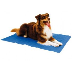 tapis réfrigérant pour chien