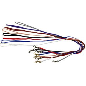 Laisse nylon pour collier d'expo