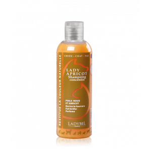 shampoing poils roux Lady Apricot