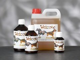 velcote vitamines complément alimentaire pour chien et chat
