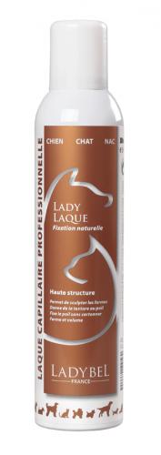 laque sculpteur Lady Laque Ladybel 300 ml
